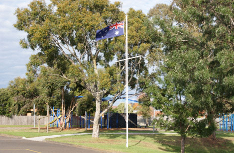 Main-School-Photo-flag-trees
